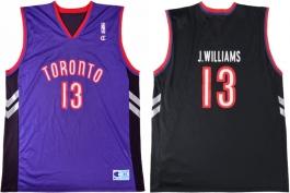 Jerome Williams Toronto Raptors Purple Vest
